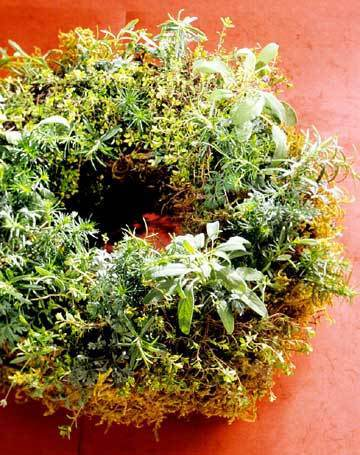 Living Herbal Wreath